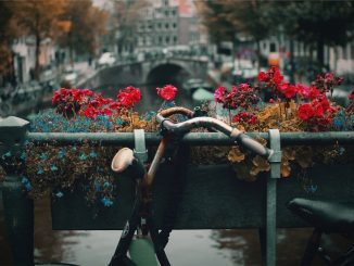 Bike in Amsterdam by nck (Unsplash.com)