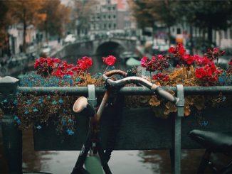 Bike in Amsterdam by nck (Unsplash.com)
