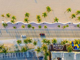 Palm tree-lined road. by lance_asper (Unsplash.com)